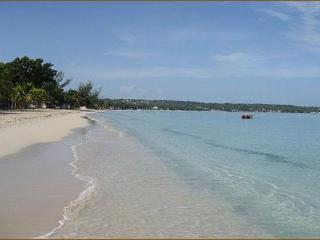 A/C 1 BR Garden Studio Apt. w/ kit. Steps to Beach - Negril vacation rentals
