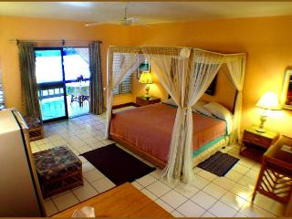 BEACH FRONT Sundeck/Verandah Suite w/ kitchen - Negril vacation rentals