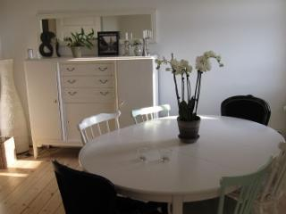 Beautiful Copenhagen apartment near the city centre - Copenhagen vacation rentals