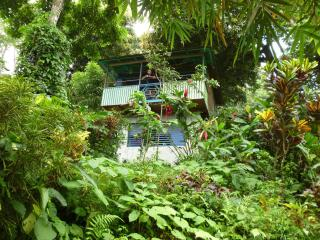 mango ridge ocean view cottages port antonio jam.. - Port Antonio vacation rentals