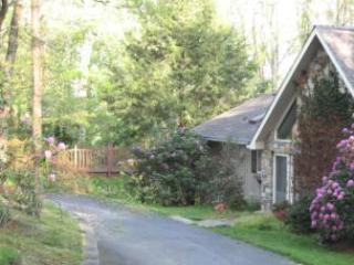 Serene Mountain Vacation Home - hot tub - Asheville vacation rentals