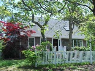 1605 - CHARMING CAPE IN ISLAND GROVE THAT IS TRUE VINEYARD! - Edgartown vacation rentals