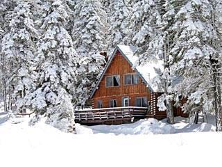 Canyon Log Retreat #1297 - Image 1 - Big Bear Lake - rentals