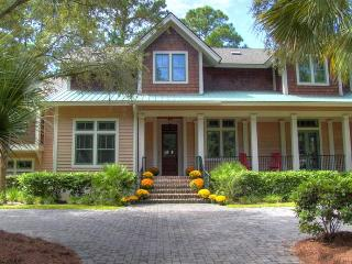 Greenwing Teal 02 - Hilton Head vacation rentals