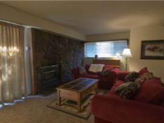 #625 Golden Creek - Image 1 - Mammoth Lakes - rentals