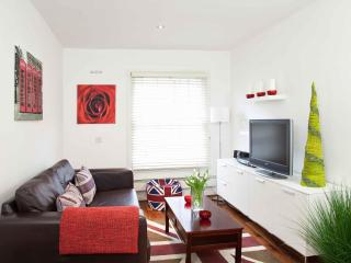 Stylish, Boutique Modern Central London Flat (P03) - London vacation rentals
