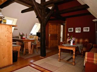 LLAG Luxury Vacation Apartment in Meissen - 915 sqft, well-kept, in an optimal location, central next… - Dresden vacation rentals