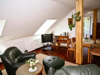 LLAG Luxury Vacation Apartment in Meissen - 700 sqft, well-kept, in an optimal location, central next… - Meissen vacation rentals