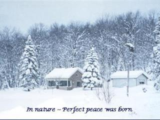 Nice 1 bedroom Cottage in Lowville - Lowville vacation rentals