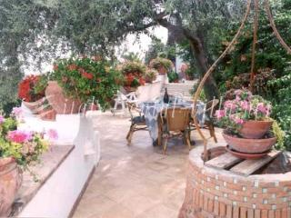 Casa Ida with large garden and great sea view - Praiano vacation rentals
