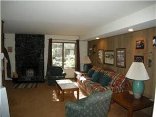 Seasons 4 - 1 Brm - 1 Bath , #123 - Image 1 - Mammoth Lakes - rentals