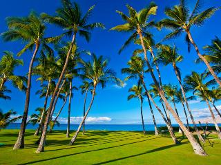 Sapphire Seas Beach Estate - Kihei vacation rentals
