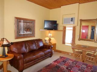 Nice Condo with Internet Access and A/C - Aspen vacation rentals