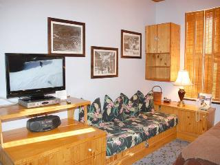 Independece Square Unit 311 - Aspen vacation rentals