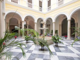PALACE XIX CENTURY .LOVELY APARTMENT NEAR CATHEDR - Seville vacation rentals