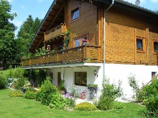 LLAG Luxury Vacation Apartment in Clausthal-Zellerfeld (Oberharz) - 721 sqft, quiet, beautiful, relaxing… - Clausthal-Zellerfeld vacation rentals
