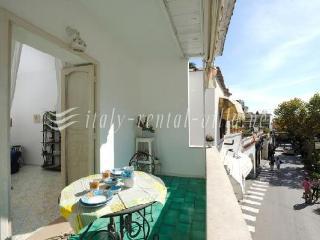 Villa Begonia in the heart of Positano - Positano vacation rentals