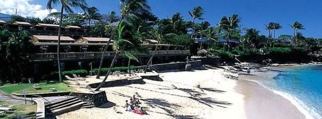 Deluxe  Beachview Maui Condo - Image 1 - Lahaina - rentals