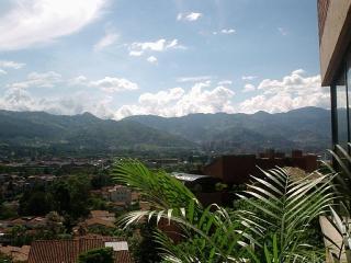 Zona Viva Medellin el Poblado Penthouse - Medellin vacation rentals