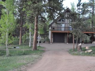 Cozy Chalet with Deck and Internet Access - Woodland Park vacation rentals