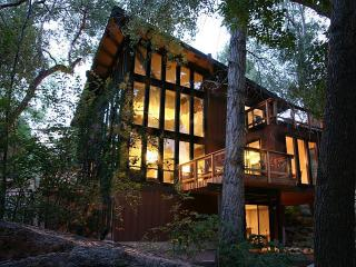 Great 2015 Rates *** Stream Side Modern Retreat - South Central Colorado vacation rentals