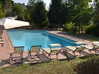 Casa Camomilla C - Image 1 - Pontassieve - rentals