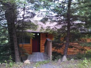 Cabin in the Clouds - Black Mountain vacation rentals