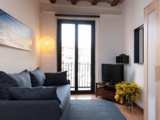 Liceu Loft Studio E - Barcelona vacation rentals