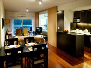 Best location RECOLETA, free wifi, Hugh Balcony - Buenos Aires vacation rentals