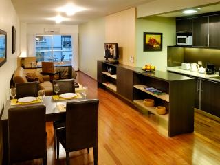 Perfect location RECOLETA, FREE Wifi - Buenos Aires vacation rentals
