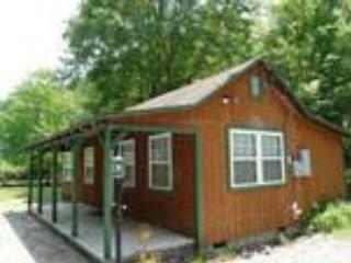 Cozy Cabin on the Creek - Bryson City vacation rentals