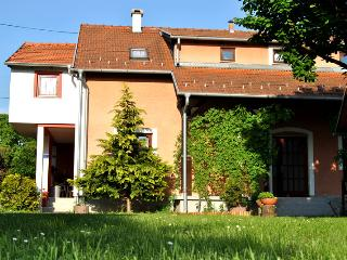 Suncani (Sunny) apartments - unique Zagreb estate - Zagreb vacation rentals