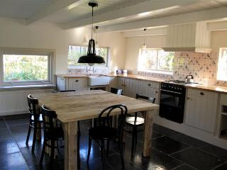 Farm house overlooking pastures outside Amsterdam - Abcoude vacation rentals