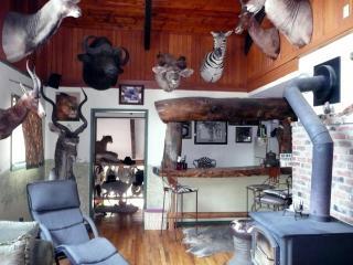 Whitebird Summit Lodge - Grangeville vacation rentals