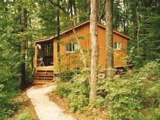 Castaway Cabin Vacation Cabin Hocking Hills Ohio - Logan vacation rentals
