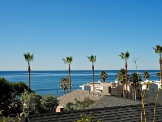 #249 - LUXURIOUS BEACHVIEW Retreat W/Terrace! - Mission Beach vacation rentals