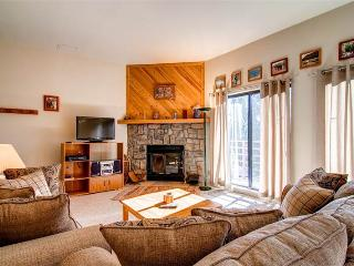 2 BR/2 BA Condo, quaint gathering place, centrally located shopping/skiing/hiking Sleeps 6 - Silverthorne vacation rentals