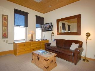 Indy313 - Aspen vacation rentals