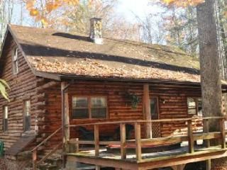 Shavers Fork Riverfront Log Cabin - The Big Poplar - Elkins vacation rentals