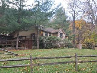 CHEAT RIVER near Elkins,WV.  HOT TUB! Fully staffed.Pet friendly. TOP RATED! - Elkins vacation rentals