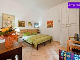 Trastevere  railway station lovely miniflat - Rome vacation rentals