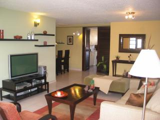 Renovated Condo in the heart of Condado LagoonView - San Juan vacation rentals