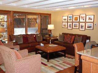 Fasching Haus Unit 10 - Aspen vacation rentals