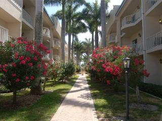 Palm Bay Club  Private Beach 3 min. - Pool, jacuzi - Siesta Key vacation rentals