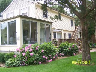 Cape May Point -- Vacation in Paradise - Cape May Point vacation rentals
