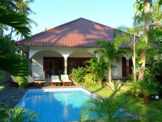 Cozy Villa with Deck and A/C - Lovina vacation rentals