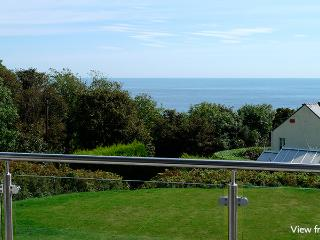 Five Star Home - Nethercote, Freshwater East - Freshwater East vacation rentals