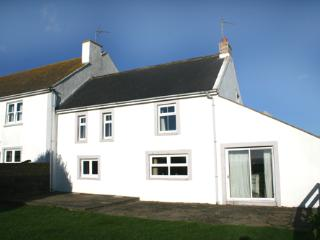 Carn Nwchwn Cottage - Saint Davids vacation rentals