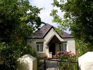 Lovely 4 bedroom House in Newport - Newport vacation rentals