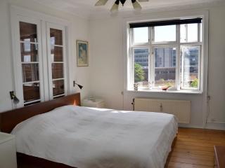 Large family friendly apartment near Skt. Hans Torv - Copenhagen vacation rentals